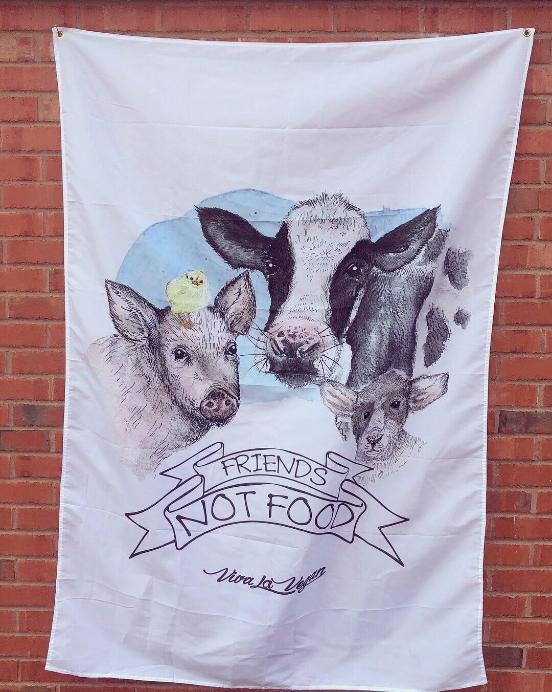 Statement Flag: Friends not food