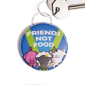 Bottle Opener Keyring : Friends Not Food