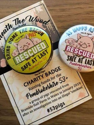1 Beneath The Woods Charity Badge #53 pigs
